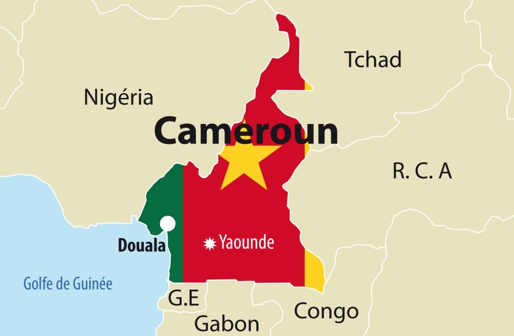 Cameroun : des échanges commerciaux bilatéraux qui ont presque ...