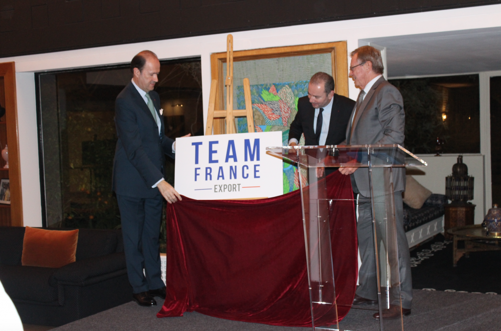 Team France Export 1